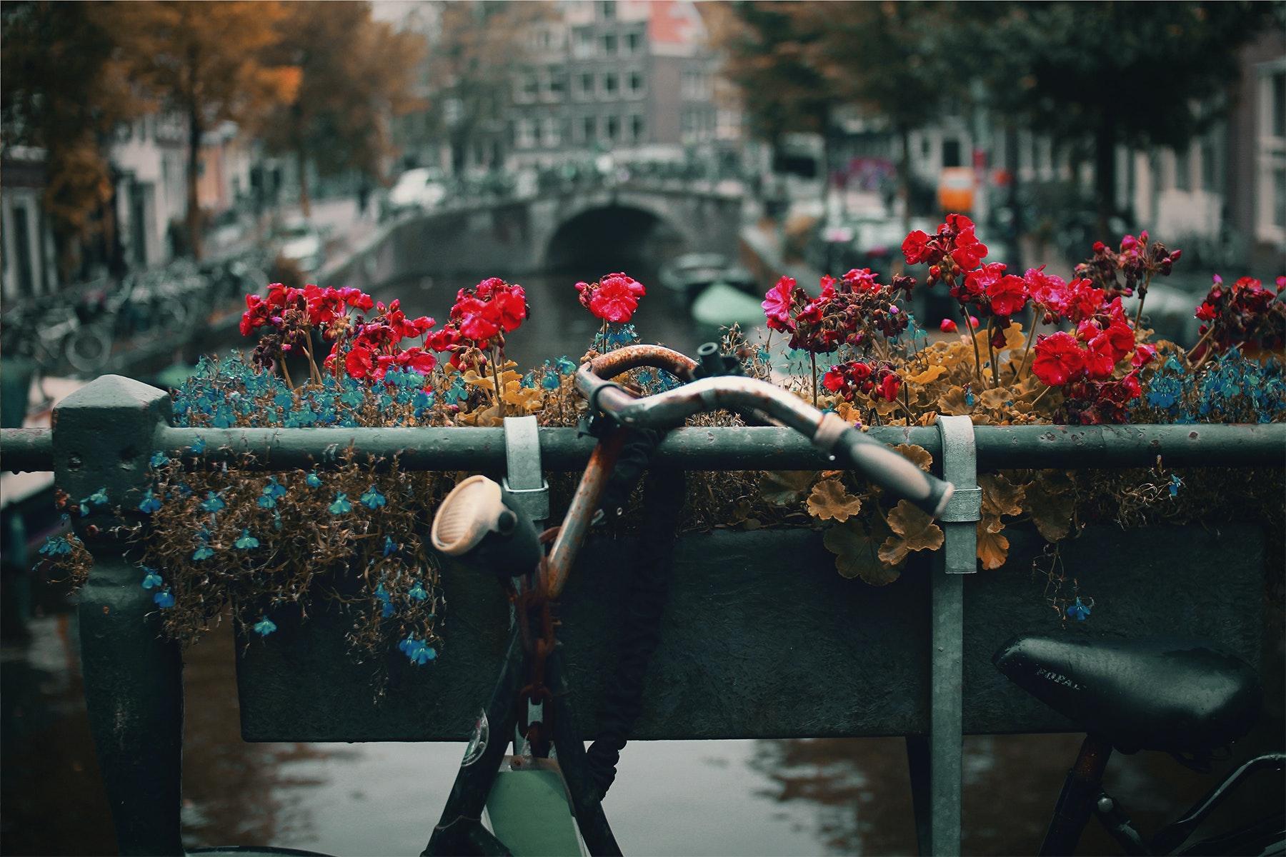 Amsterdam (Nick Scheerbart)